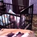 Bebê mestre da fuga